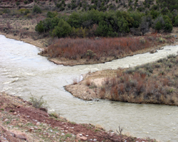 chamas river rapids abiqui new mexico fork
