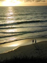 sunset surf beach walkers